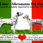Announcement Del Parnaso