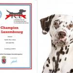 Luxemburg Champion